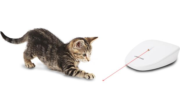 PetSafe Laser Tail Cat Toy Spins and whirls to keep your cat moving