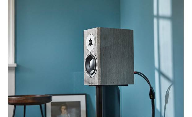 Dynaudio Special Forty Shown in room (stand not included)
