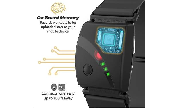 Authorized Reseller Green Heart Rate Monitor Armband Scosche Rhythm