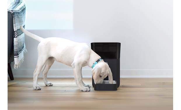Petnet SmartFeeder 2.0 The center of gravity is lower to prevent tipping