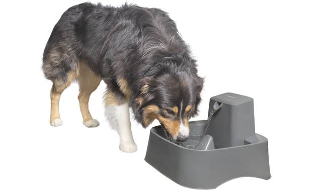 PetSafe Drinkwell® 2 Gallon Pet Fountain Front