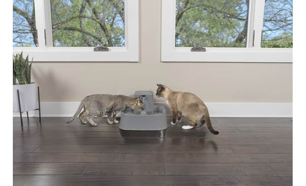 PetSafe Drinkwell® 2 Gallon Pet Fountain Large bowl is perfect for multi-pet households