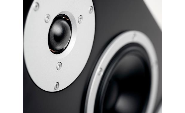 Dynaudio Excite X44 Close-up view of silk dome tweeter