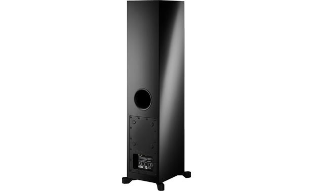 Dynaudio Xeo 30 Back