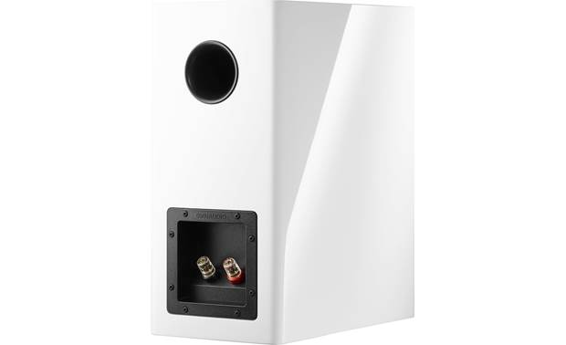 Dynaudio Evoke 20 Back