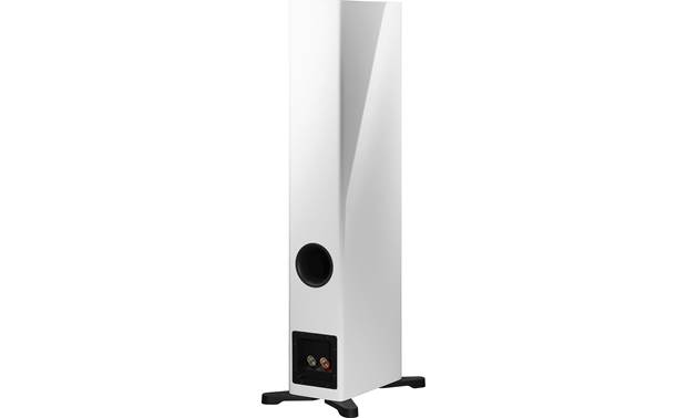 Dynaudio Evoke 30 Back