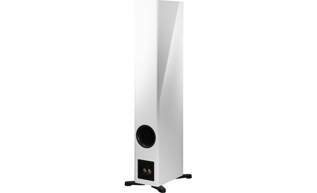 Dynaudio Evoke 50 Back