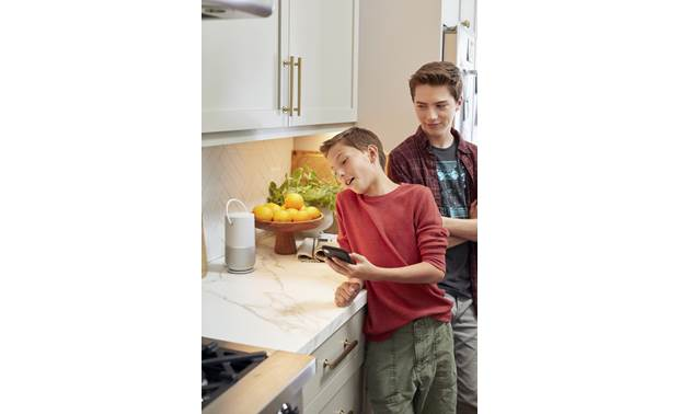 Bose® Portable Home Speaker Stream wireless from your smartphone