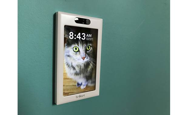 Brilliant Smart Home Control My cat Lucy's eyes really pop on the crisp LCD display