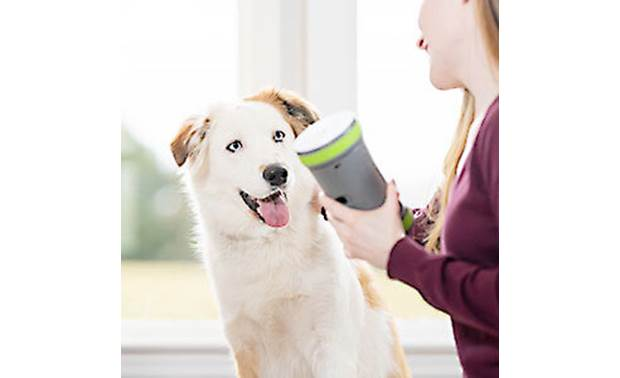 PetSafe Kibble Chase™ Roaming Treat Dropper Holds up to a half cup dry kibble or small, hard treats