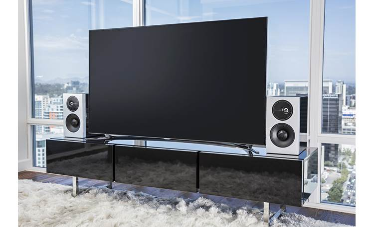 Definitive Technology Demand Series D11 Use as part of a high-end entertainment system