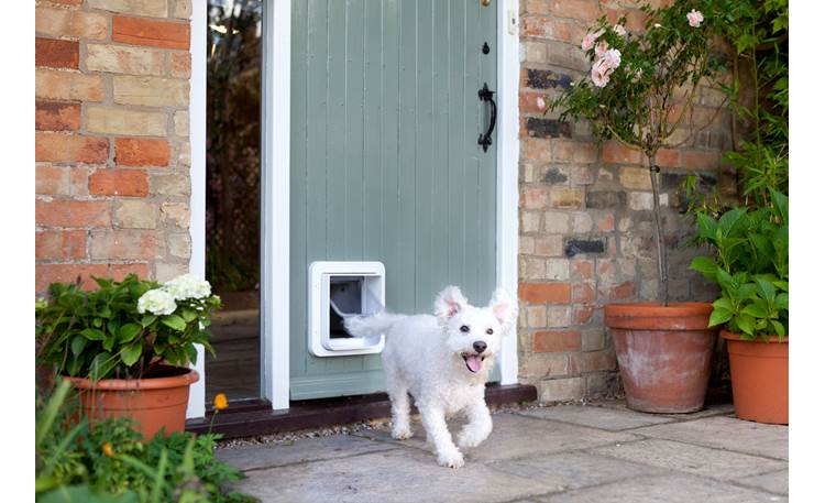SureFlap Microchip Pet Door Exterior