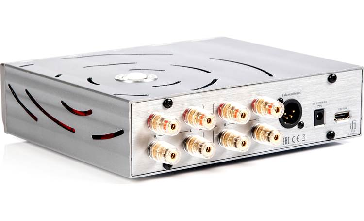 iFi Audio Pro iESL Back panel with inputs for separate amplifier (required)