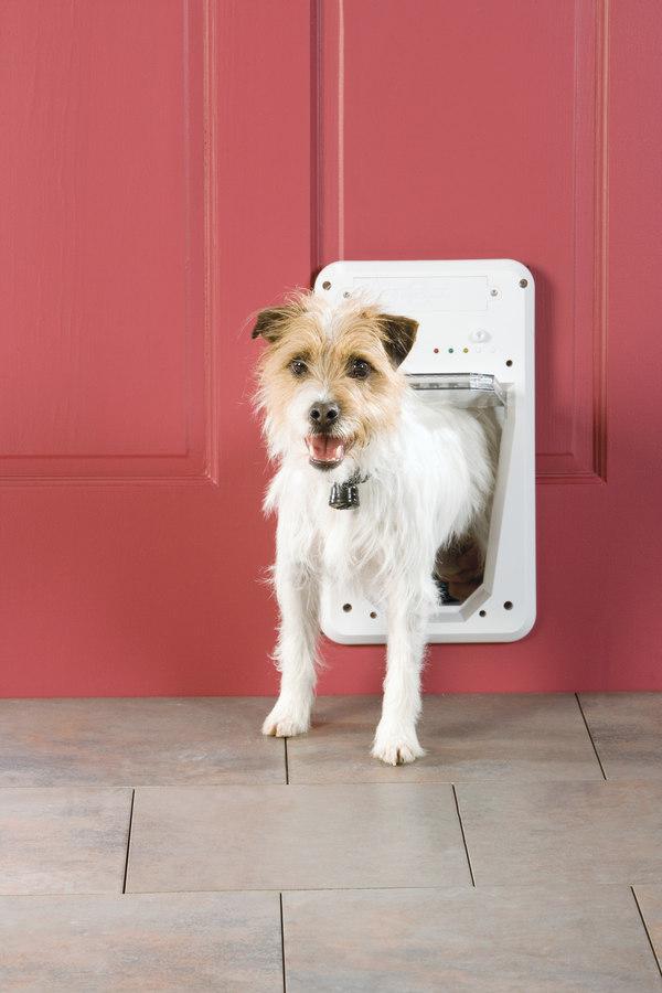 petsafe small electronic smartdoor electronic locking pet do