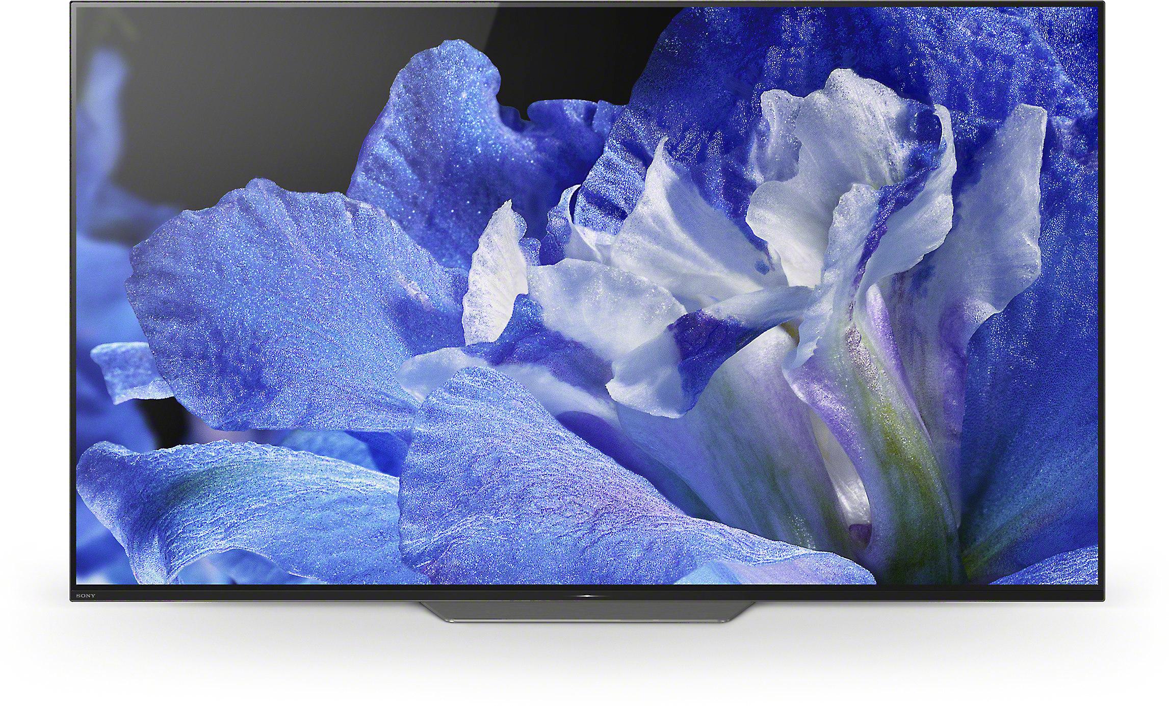 7a6a1aae18c6 Sony XBR-55A8F 55